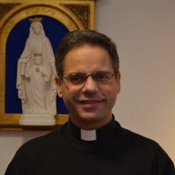Prof. D. José Mª Alsina hnssc